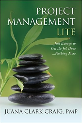 Project Management Lite: Just Enough to Get the Job Done